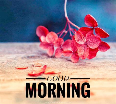 q 90 1 morning edition q 90 1 good morning images photos wallpapers pictures free download