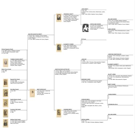 family diagram pin hewitt family tree image search results on