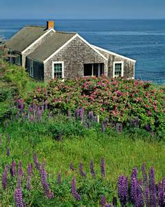 by the sea cottages 17 best ideas about cottages by the sea on