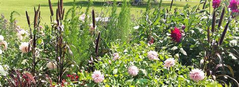 Botanischer Garten Augsburg Schmetterlinge 2016 Ausflug In Den Botanischen Garten In Augsburg