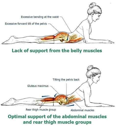 the 25 best muscles in the back ideas on exercises for shoulder muscles in