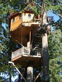 famous tree houses treehouse designers guide treehouses com hgtv