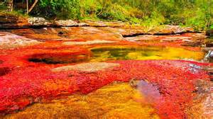 river of 5 colors kaleidoscopic ca 241 o cristales river of five colors