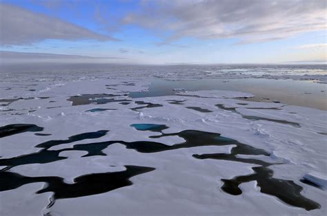 arctic sea arctic sea national snow and data center