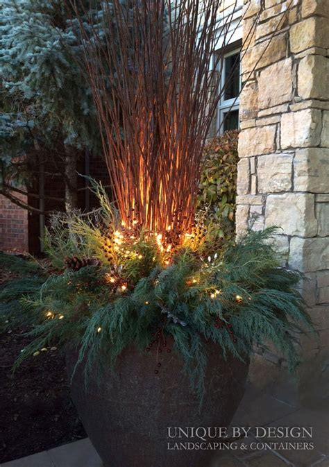 light for plants in winter 25 best ideas about winter container gardening on