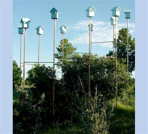 bluebird ring bird houses the bird man