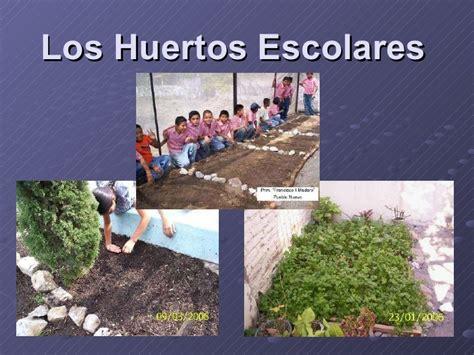 imagenes huertas escolares los huertos escolares
