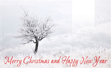 free christmas and new year card template for web and e mail