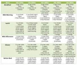 resumes cv diet plans for