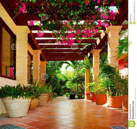 Terrace With Flowers Stock Images   Image: 24814394