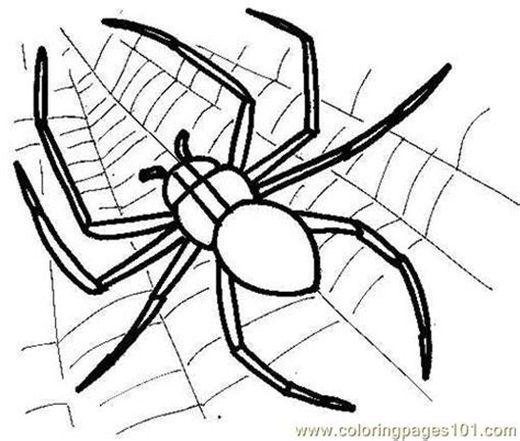 small spider coloring page spider picture coloring page free spiderman coloring