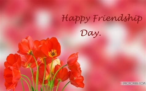flower wallpaper with friendship quotes flowers of love given for friendship