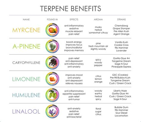 the medicinal value of terpene testing cannabis kurple magazine what are terpenes a cannabis marijuana enthusiast s guide