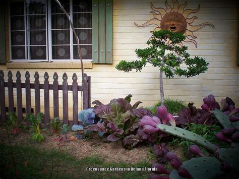 Florida Cottage Gardens by Cottage Gardening Forum From A Central Florida