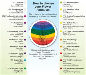 How To Use Colour In Phytobiophysics Colour For Wellbeing