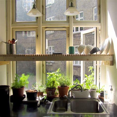 Kitchen Window Herbs Kitchen Window Garden The Sink Drying Rack That