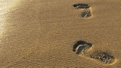 sand background footprints in the sand wallpapers wallpaper cave