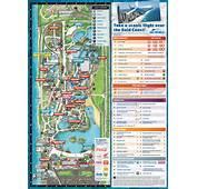 Sea World  Cheap Discount Tickets &amp Passes Rides Map Gold Coast