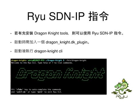 bgp routing table exle ryu sdn ip