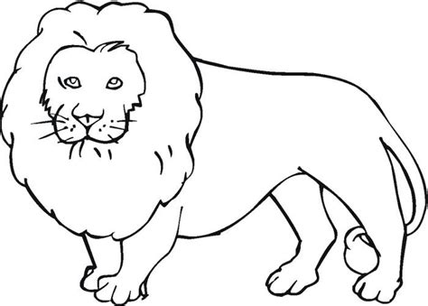 pictures of animals color animals beautiful decoration pictures of animals to color animal coloring printable