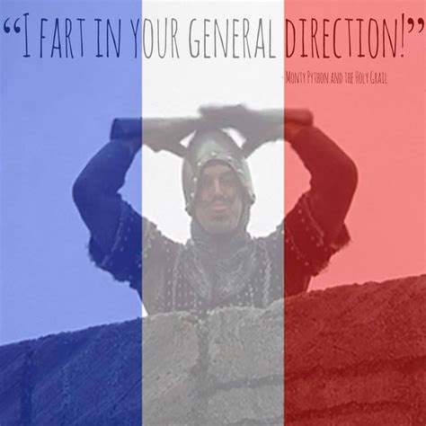 Meme In French - the best use of the french flag fb filter i ve seen so far