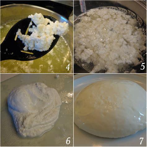 Mozarella Cheese 1 how to make mozzarella cheese in 1 hour