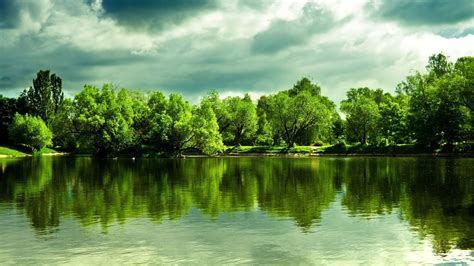 wallpaper green view nature all is green picture nr 60874