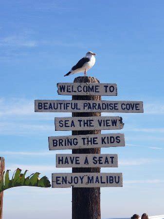 paradise cove malibu menu paradise cove cafe malibu malibu menu prices