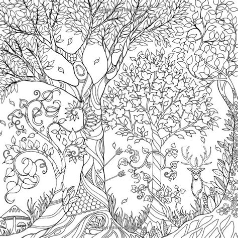 coloring pages for adults enchanted 73 best images about garden on pinterest gardens