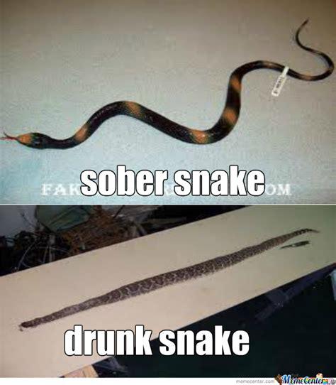 Snake Meme - go home snake you re drunk by hassan elasri meme center