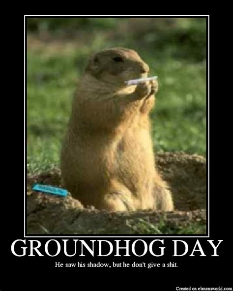 groundhog day in today is groundhog day and depending on how superstitious