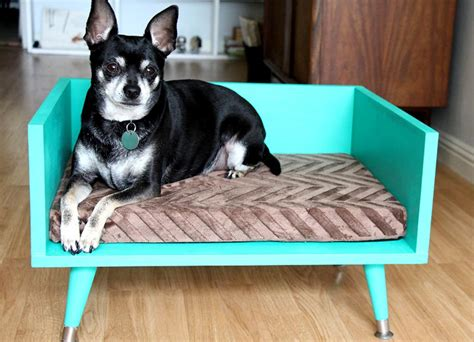 diy pvc dog bed diy memory foam dog bed do it your self dog beds and costumes