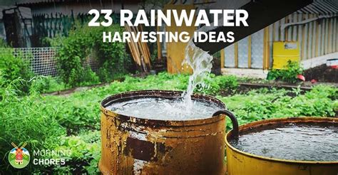 awesome diy rainwater harvesting systems   build