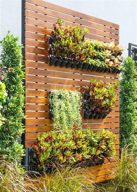 imagenes de jardines verticales caseros los beneficios de tener un jard 237 n vertical en tu hogar