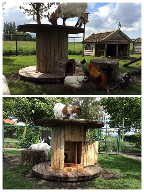 geiten in tuin kippen en geiten hok garden pinterest geiten kippen