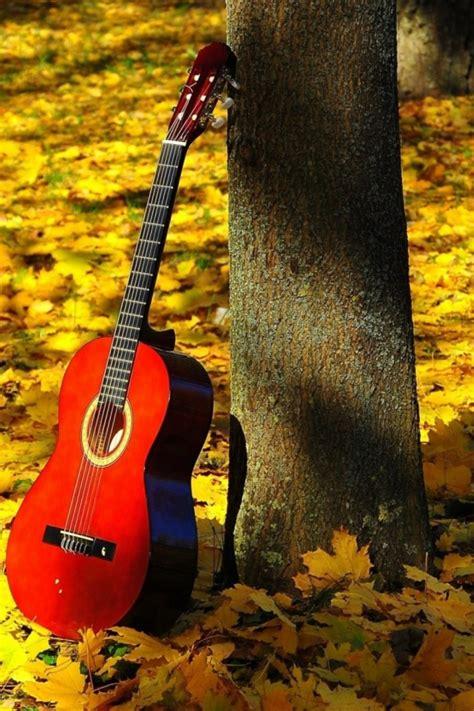 wallpaper android guitar maple guitar hd wallpaper 9043
