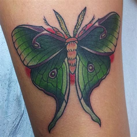 luna moth tattoo moth images designs