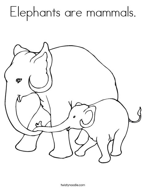 elephants are mammals coloring page twisty noodle