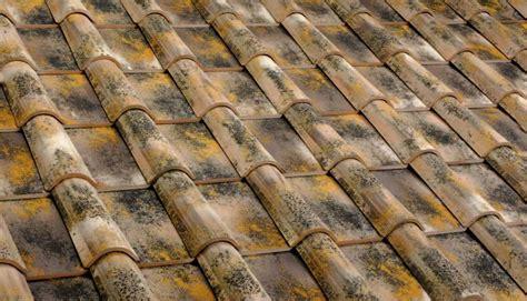 dachziegel mönch und nonne romanische dachziegel romanische dachziegel mediterrane