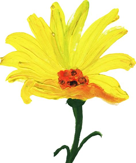Painted Flower 12 simple painted flower png transparent onlygfx