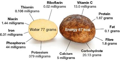 carbohydrates jacket potato potatoes nutrition facts uses and benefits of potatoes