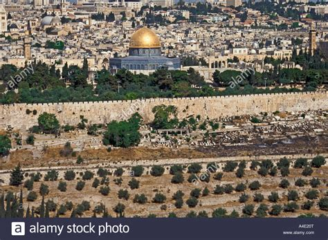 garten gethsemane ltd jerusalem city and dome of the rock from garden of