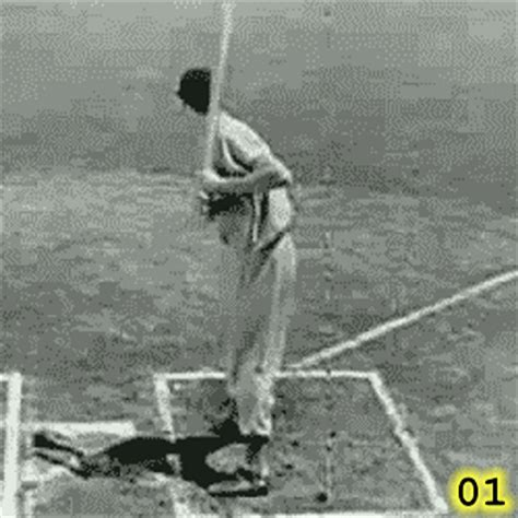ted williams baseball swing ted williams