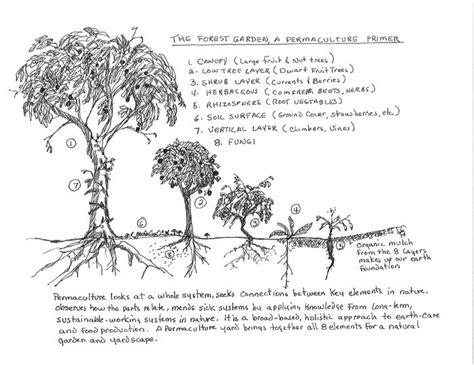 Permaculture not Monoculture   The Gardeners Calendar
