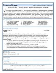 Executive Bio Template by Best Photos Of Executive Biography Word Templates