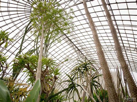 serre jardin des plantes visite des serres du jardin des plantes de nantes