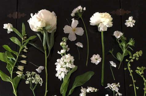 expert advice  white garden ideas  petersham