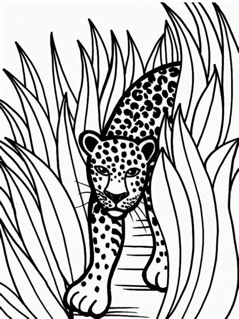 jaguar coloring pages 02