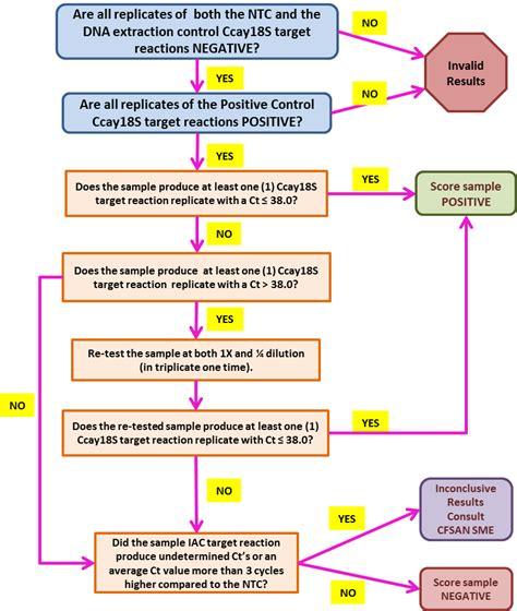flowchart of dna replication flowchart of dna replication create a flowchart
