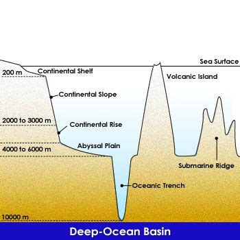 Continental Shelf Slope Rise by Best 25 Continental Shelf Ideas On American